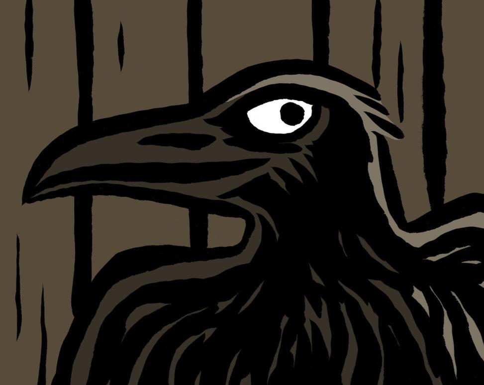 Corbeau vole la lumière_création kamishibaï_illustration Catherine Chion_conte amérindien